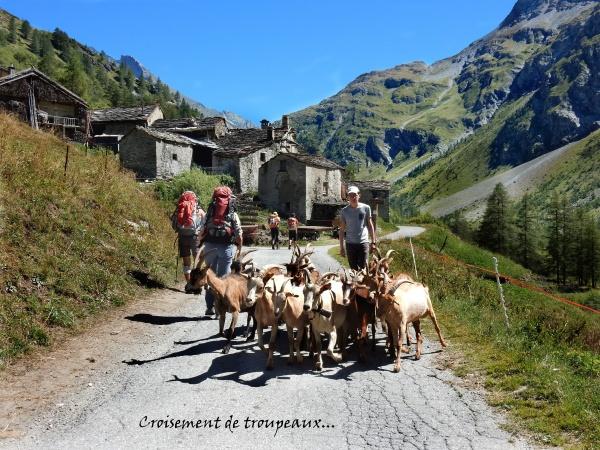 dscn1801-sous-le-hameau-des-vincendieres.jpg